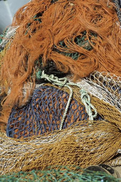 Pêche coloré corde Photo stock © russwitherington