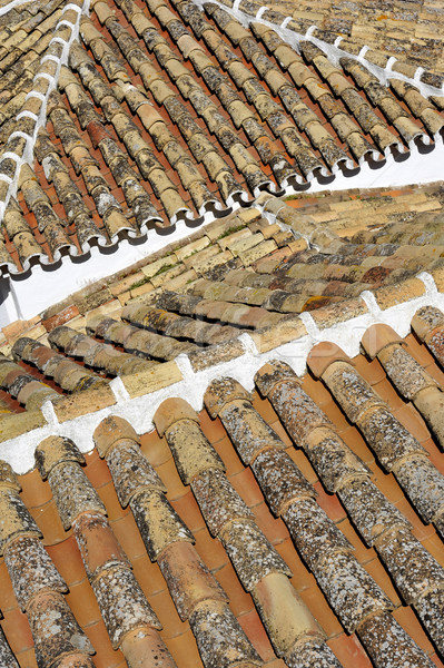 Pantiled roofs Stock photo © russwitherington