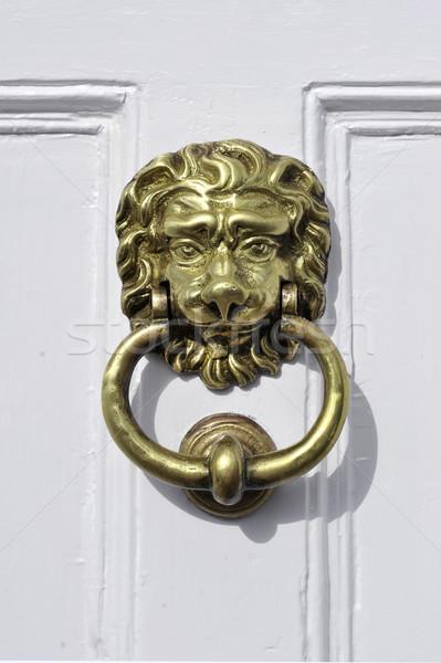 Porte tête blanche peint maison yeux Photo stock © russwitherington