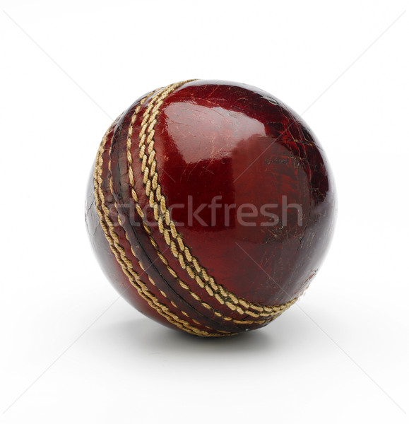 Cricket balle nouvelle blanche Photo stock © russwitherington
