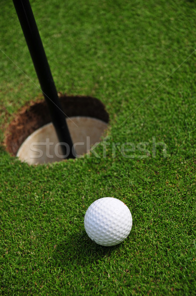 Golf ball and hole close up Stock photo © russwitherington