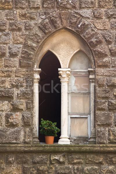 Pierre fenêtre Toscane pot usine maison Photo stock © RuthBlack