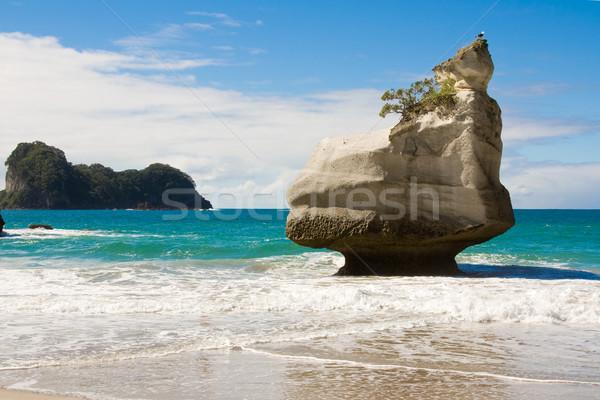 Cathedral Cove Beach Stock photo © RuthBlack