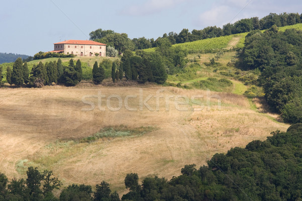 House in the Tuscan hills Stock photo © RuthBlack