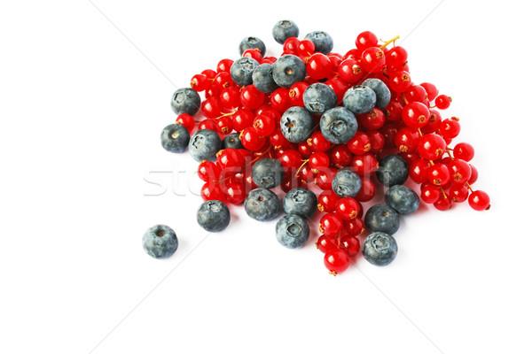 Ягоды красный черника изолированный белый лет Сток-фото © ruzanna