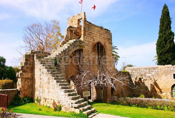 Abadia histórico norte construção belo gótico Foto stock © ruzanna