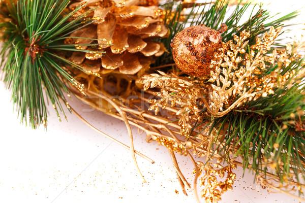 рождественская елка филиала фон белый настоящее Рождества Сток-фото © ruzanna
