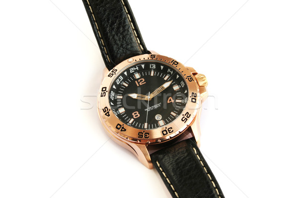 Armbanduhr isoliert weiß Metall Zeit ansehen Stock foto © ruzanna