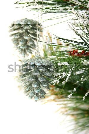 クリスマス グレー 絞首刑 孤立した 白 ストックフォト © ruzanna