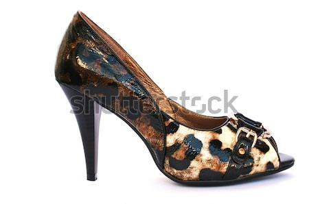 Womanish shoes Stock photo © ruzanna