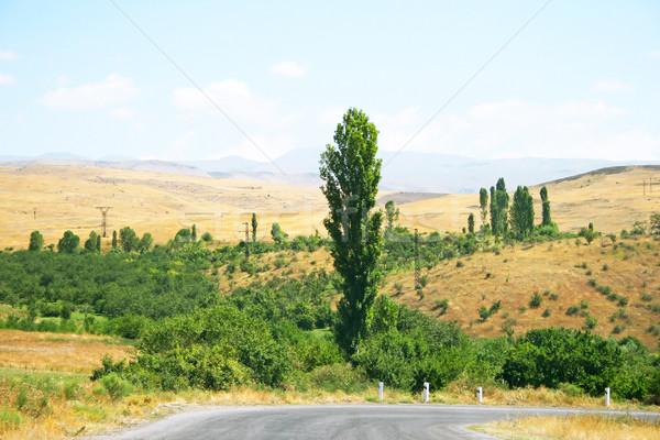 Armenian landscape Stock photo © ruzanna