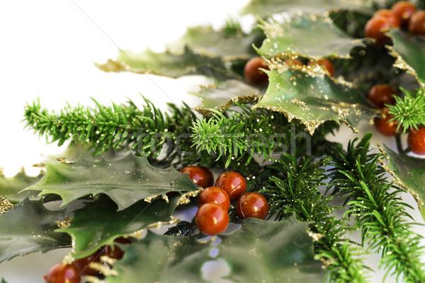 ベリー 工場 赤 液果類 白 クリスマス ストックフォト © ruzanna
