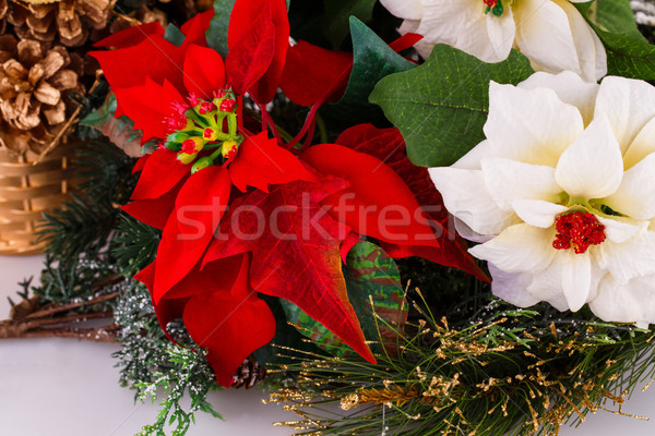 Stock photo: Holly berry flowers