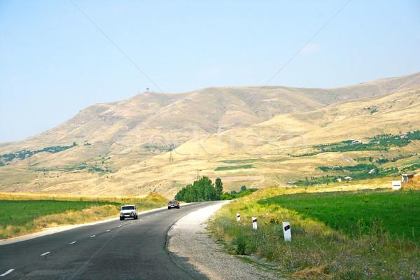 Estrada Armênia montanha carros flores árvore Foto stock © ruzanna