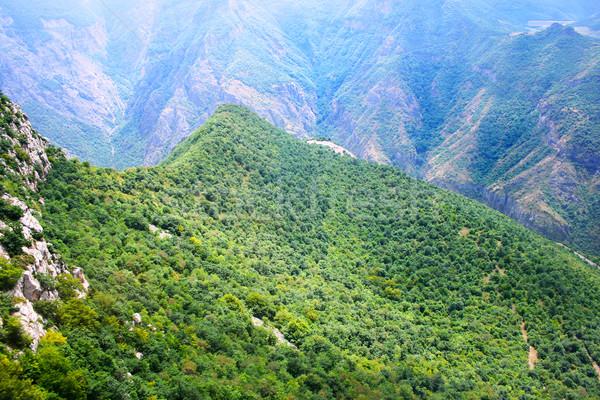 Montagnes vue altitude Arménie ciel bois Photo stock © ruzanna