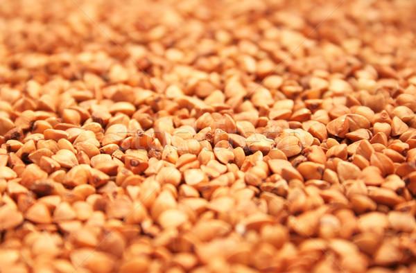 Buckwheat Stock photo © ruzanna