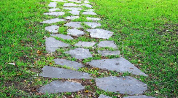 Garden path Stock photo © ruzanna