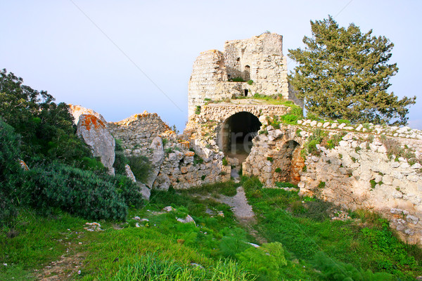 Сток-фото: замок · назад · дерево · фон · безопасности