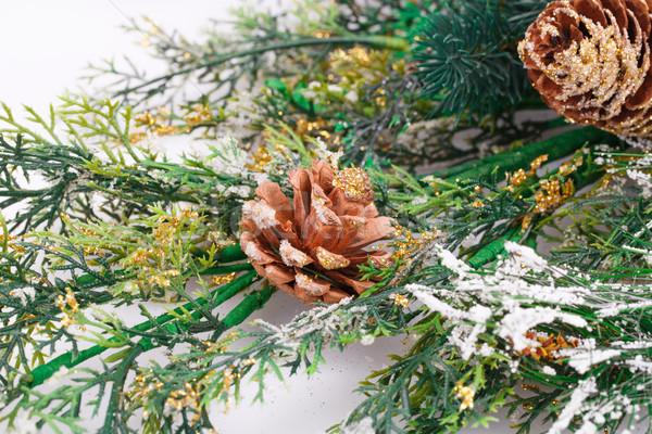 Рождества украшение филиала фон белый настоящее Сток-фото © ruzanna