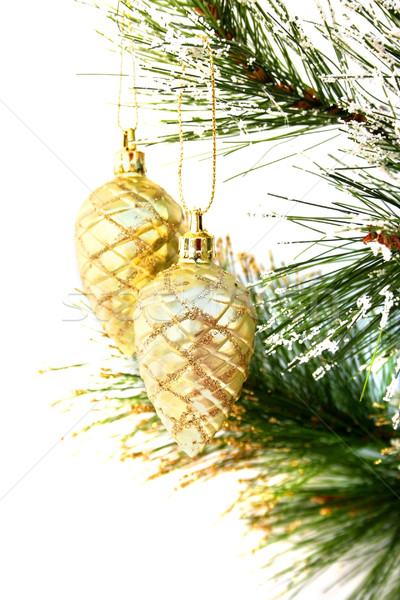 クリスマス 絞首刑 孤立した 白 雪 ストックフォト © ruzanna