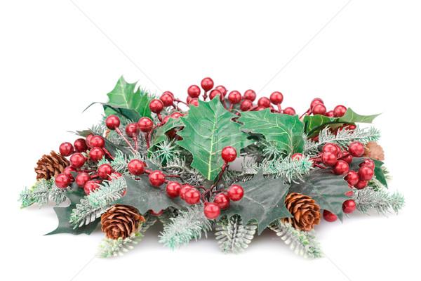 Рождества украшение изолированный белый зеленый листьев Сток-фото © ruzanna