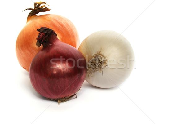 Colorido cebolas isolado branco saúde grupo Foto stock © ruzanna