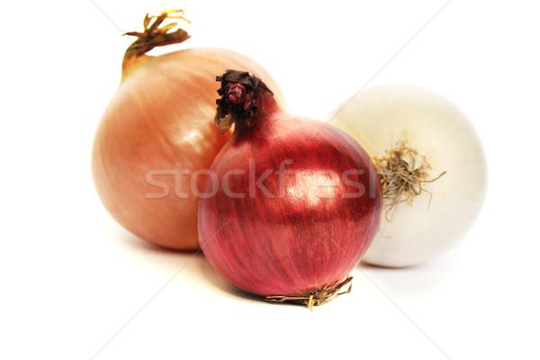 Colorful onions Stock photo © ruzanna