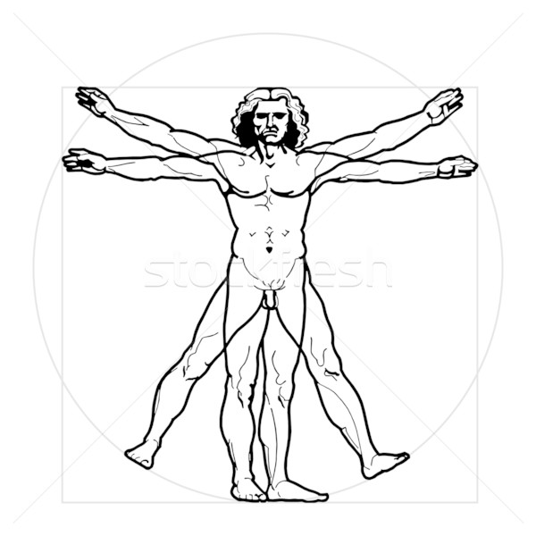 Vitruvian Man  Stock photo © rzymu