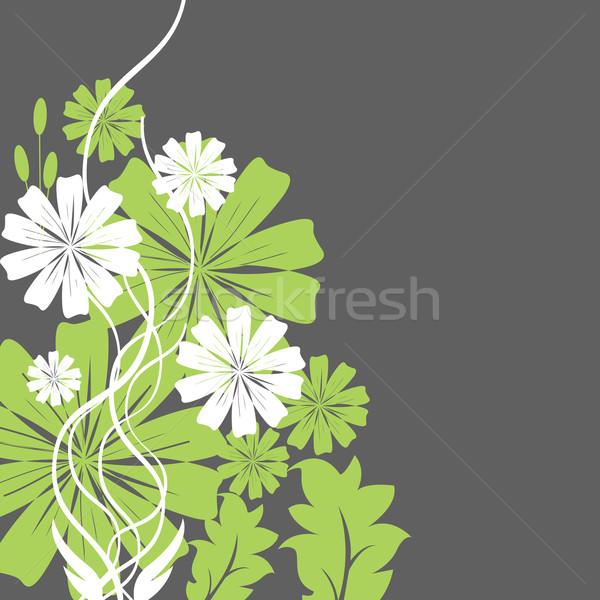 Groene witte bloemen bos abstract ontwerp blad Stockfoto © sabelskaya