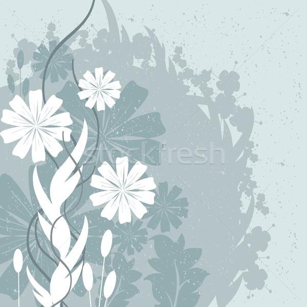 çiçekler yaprakları dizayn çiçek soyut yaz Stok fotoğraf © sabelskaya