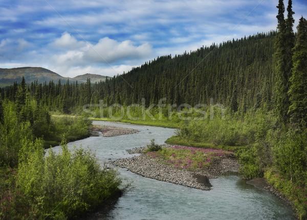 Montagnes Alaska paysage ciel fleurs eau Photo stock © saddako2