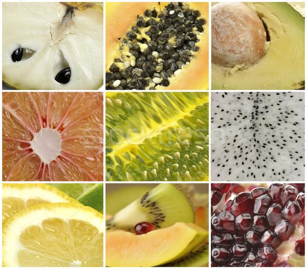 Fruit Collection Stock photo © saddako2