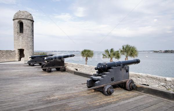 испанский форт Флорида дерево стены путешествия Сток-фото © saddako2