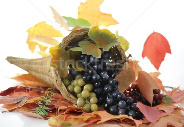 Caída cuerno de la abundancia de uva colorido hojas de otoño Foto stock © saddako2