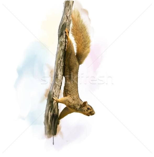 Sincap ağaç suluboya dijital boyama sanat Stok fotoğraf © saddako2
