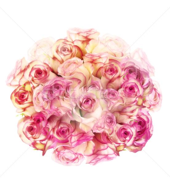 Rosa fiori digitale pittura bianco bouquet Foto d'archivio © saddako2