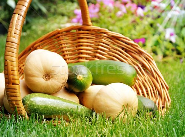 Légumes frais fraîches organique courgettes squash panier Photo stock © saddako2
