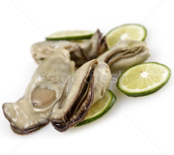 Oysters Stock photo © saddako2