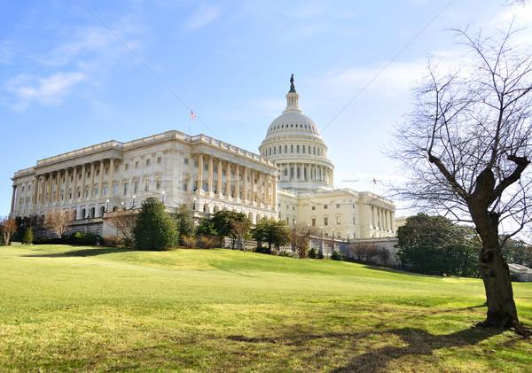 Hill budynku Washington DC domu architektury moc Zdjęcia stock © saddako2