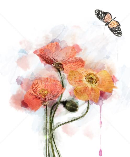 Acquerello fiori rosso papavero primavera natura Foto d'archivio © saddako2