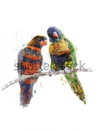 Acquerello immagine blu digitale pittura uccello Foto d'archivio © saddako2