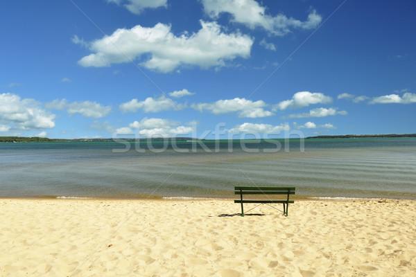 Lago Michigan playa banco nublado cielo Foto stock © saddako2