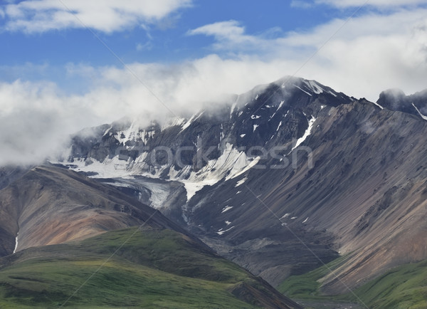 Alaska panorama parco bella montagna cielo Foto d'archivio © saddako2
