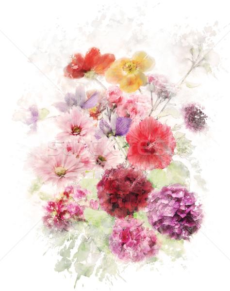Acquerello immagine fiori digitale pittura rosa Foto d'archivio © saddako2