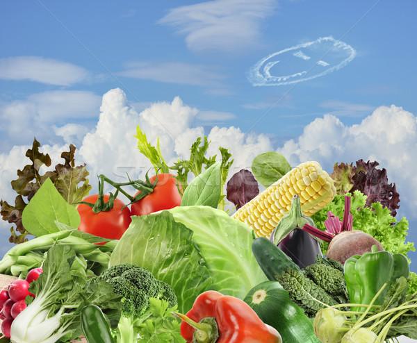Gezonde vegetarisch eten gezonde voeding blauwe hemel wolken Stockfoto © saddako2