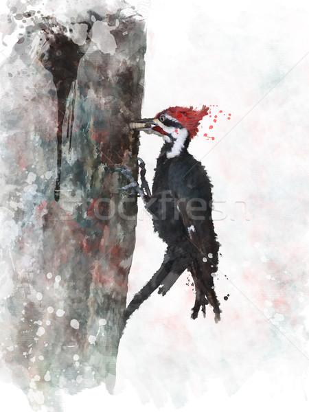 Acquerello digitale pittura albero uccello bug Foto d'archivio © saddako2