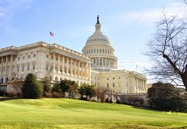 Capitol Hill Building ,Washington DC. Stock photo © saddako2