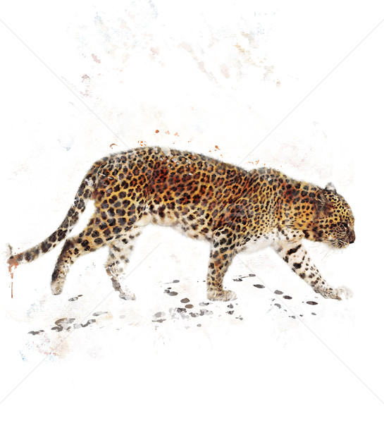 Stock photo: Watercolor Image Of Leopard