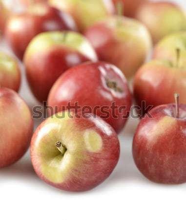 Piros almák érett alma friss aratás Stock fotó © saddako2