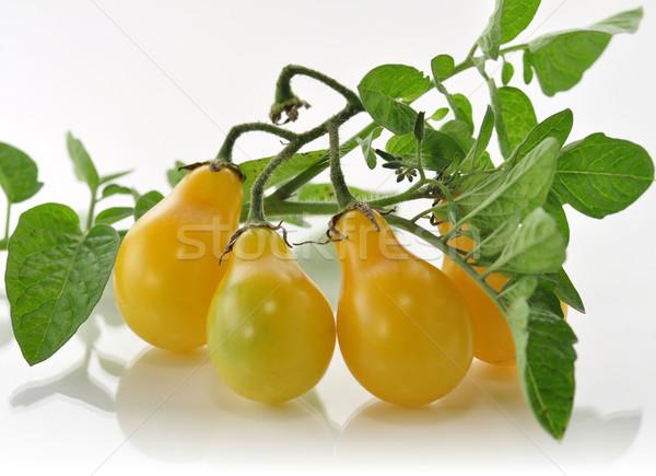 yellow tomatoes  Stock photo © saddako2